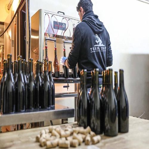 Vinen tappes på flaske hos Terra Dárt
